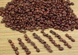 "alt=""Kaffeebohnen"" title=""© Chad McDermott - Fotolia.com"""